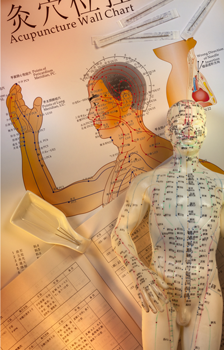 Acupuncture Training in Florida - FL | Certification ...